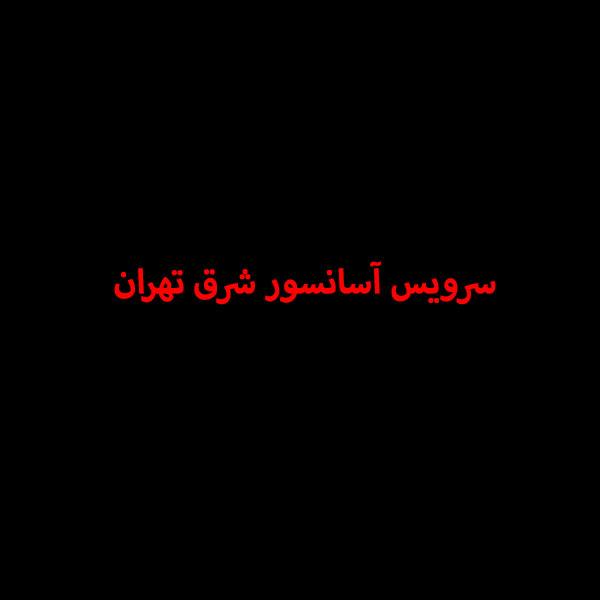 سرویس آسانسور شرق تهران